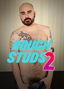 RoughStuds2