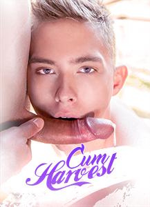 Cum-Harvest